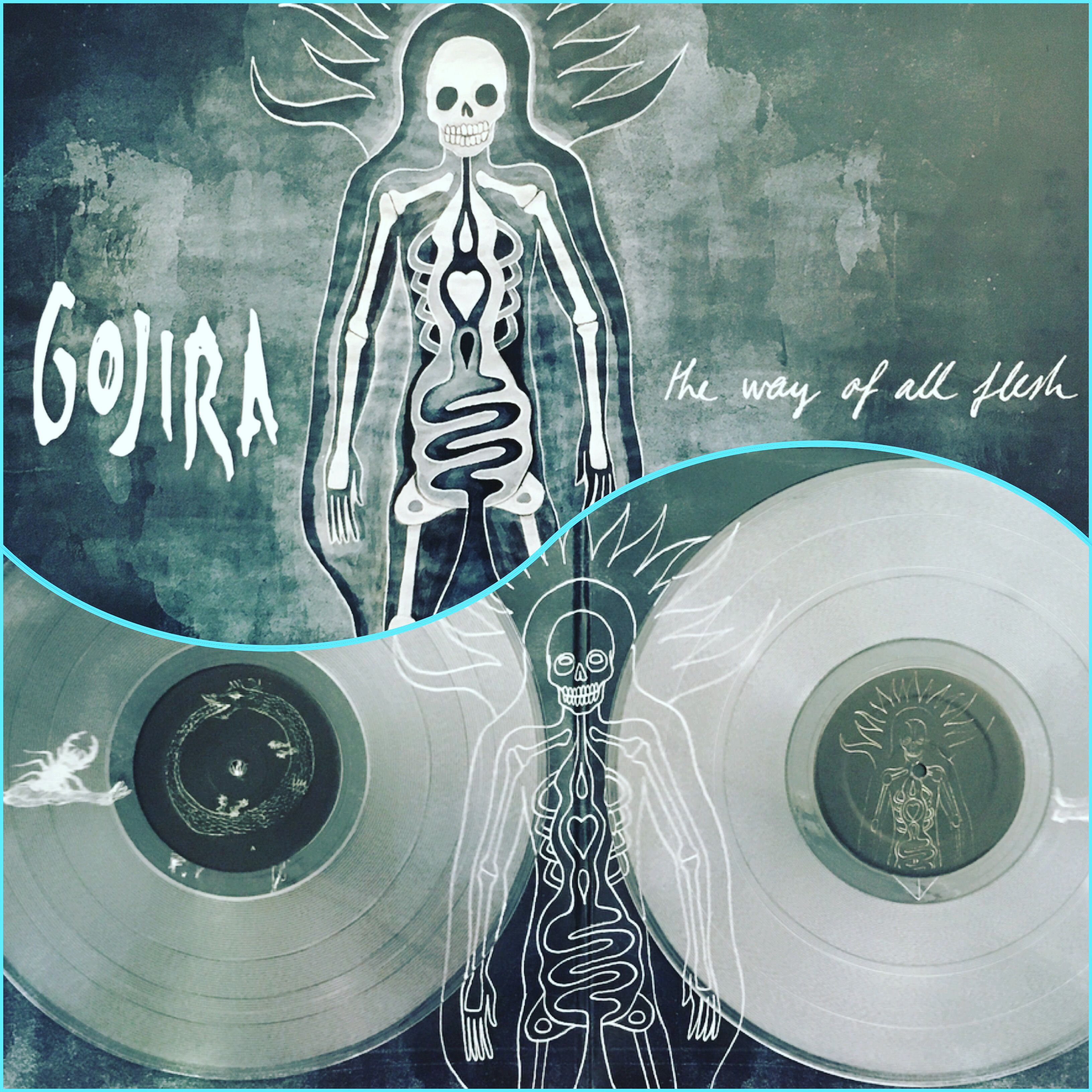 Gojira The Way Of All Flesh Vinyl Pressing Record Collection Music Record Vinyl