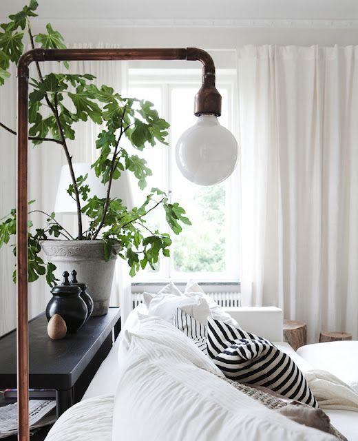 luminária e plantas
