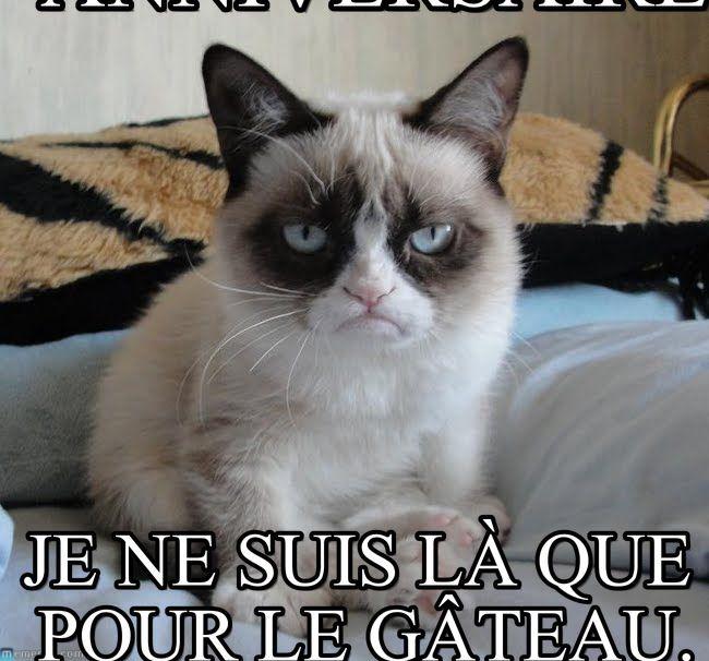 Grumpy Cat Anniversaire Joyeux Anniversaire Je Ne Suis Là Que