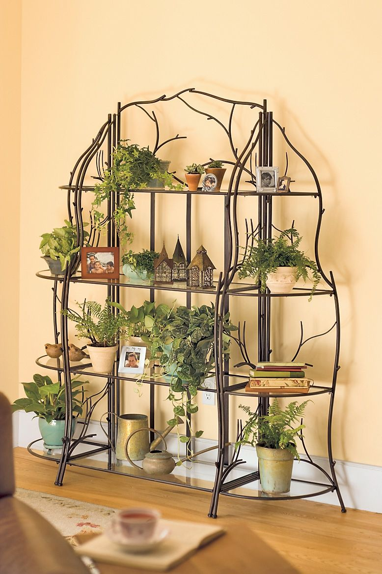 amazing group of indoor plant shelves with three levels model filled ...