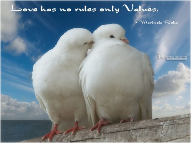 Love has no rules only Values.