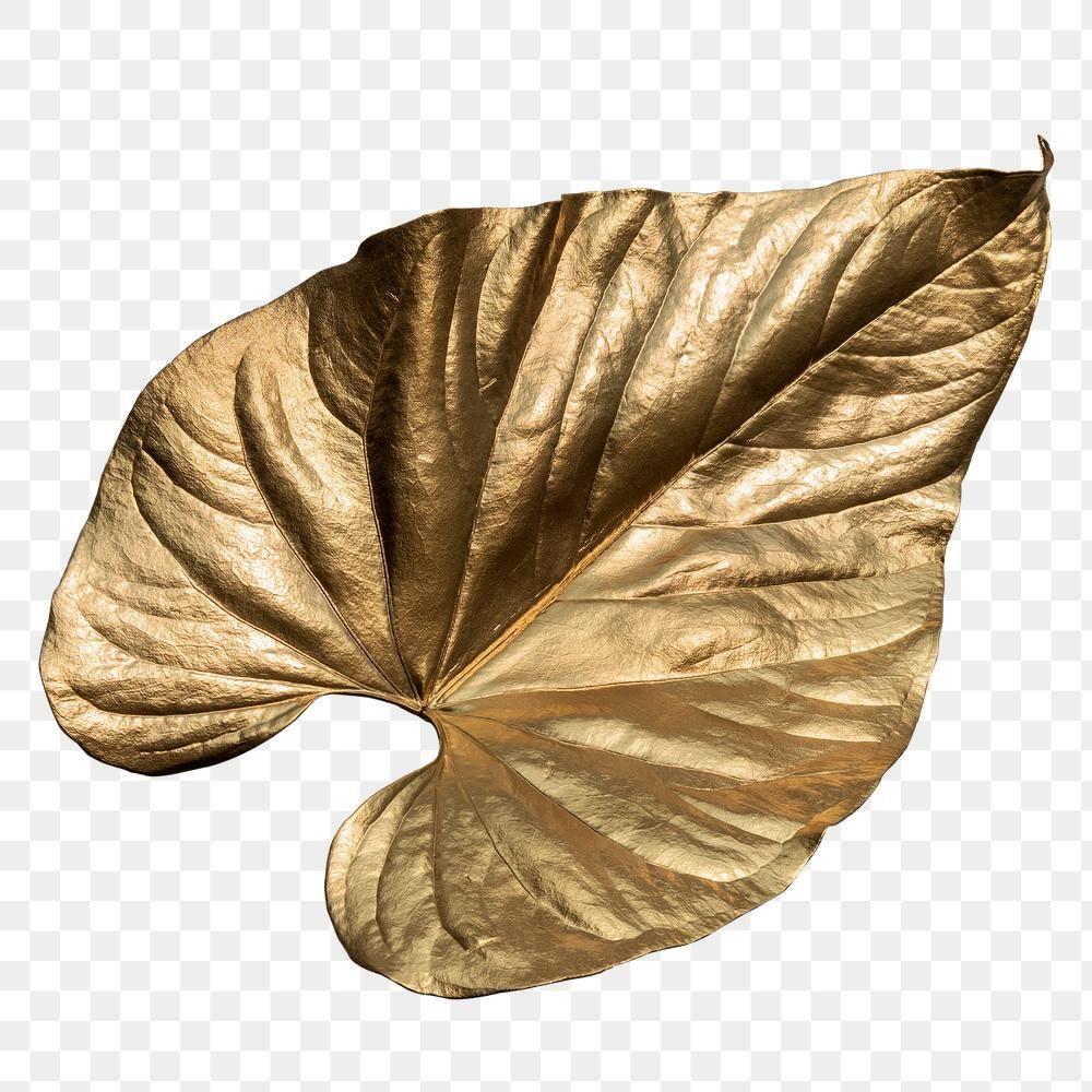 Closeup Of Gold Leaf Design Element Free Image By Rawpixel Com Adj Design Element Leaf Design Free Illustrations