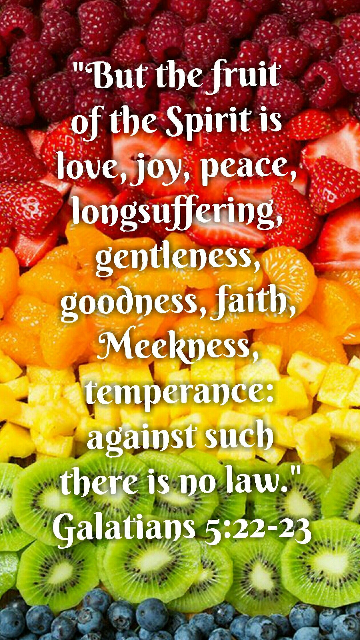 Galatians 5 22 23 Kjv But The Fruit Of The Spirit Is Love Joy Peace Longsuffering Gentleness Goodness Faith Meekn Fruit Of The Spirit New Fruit Fruit