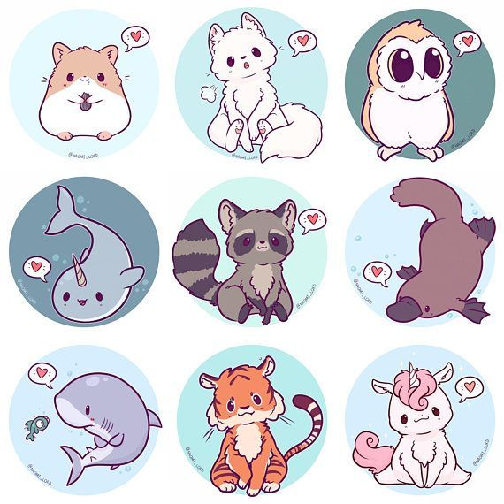 Kawaii Tiere Sticker, Eule, Schneeleopard, Shiba, Fuchs, Husky, Pfau, Corgi, Faultier, Fenchek, Pin