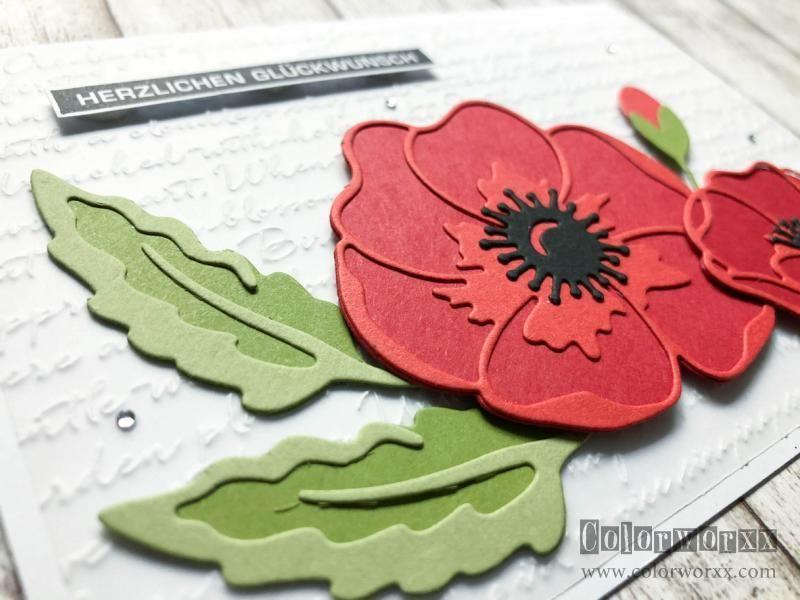 Mohnbluten Karten Blumen Und Mohn