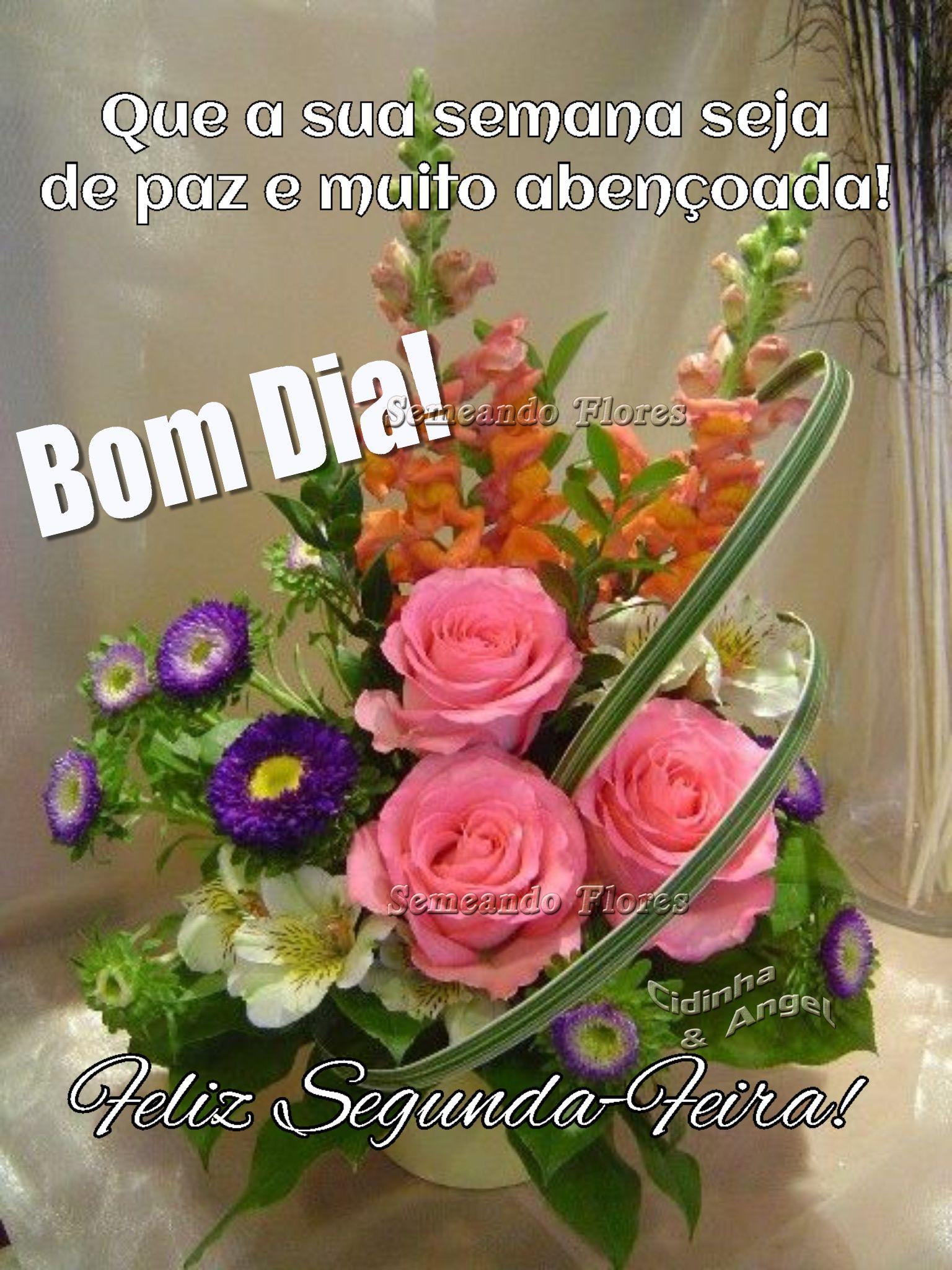 Pin De Edesia Santos Em Mensagem De Boa Noite Feliz Segunda