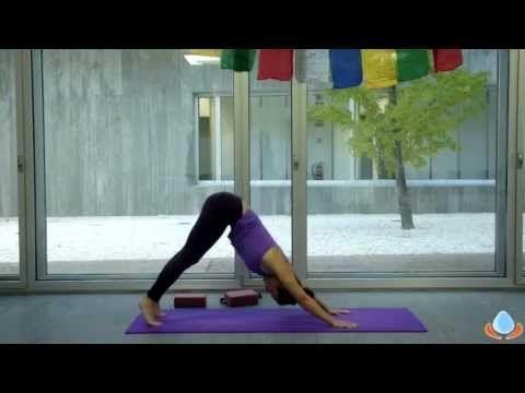 clase completa de yoga dinámico para principiantes en
