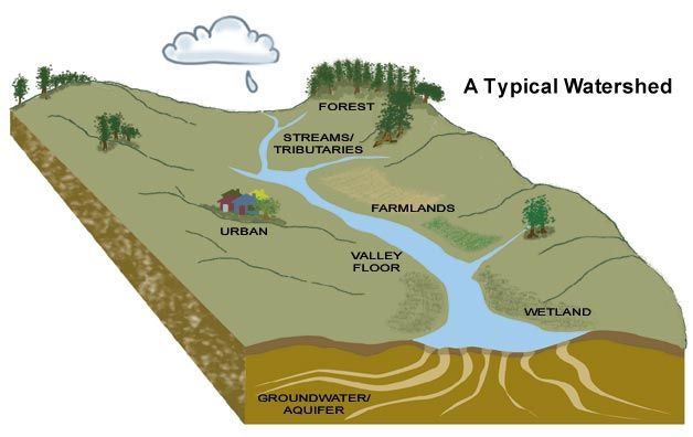 Watershed Tributary Diagram A simple graphic depic...