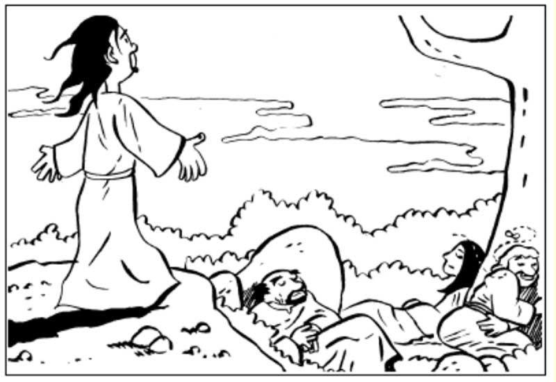 Pinto Dibujos: Monte de los olivos para colorear   pasajes biblicos ...