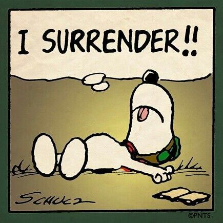 Snoopy Quotes Snoopy Quotes  Snoopy Sayings  Snoopy Picture Quotes  Charlie .