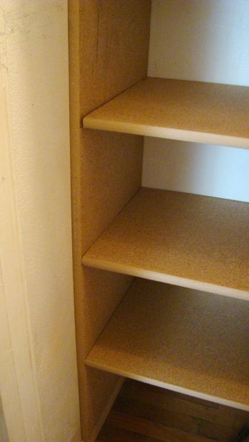 Picture Of Almost Tool Less Diyers Custom Shelves Proving A Point