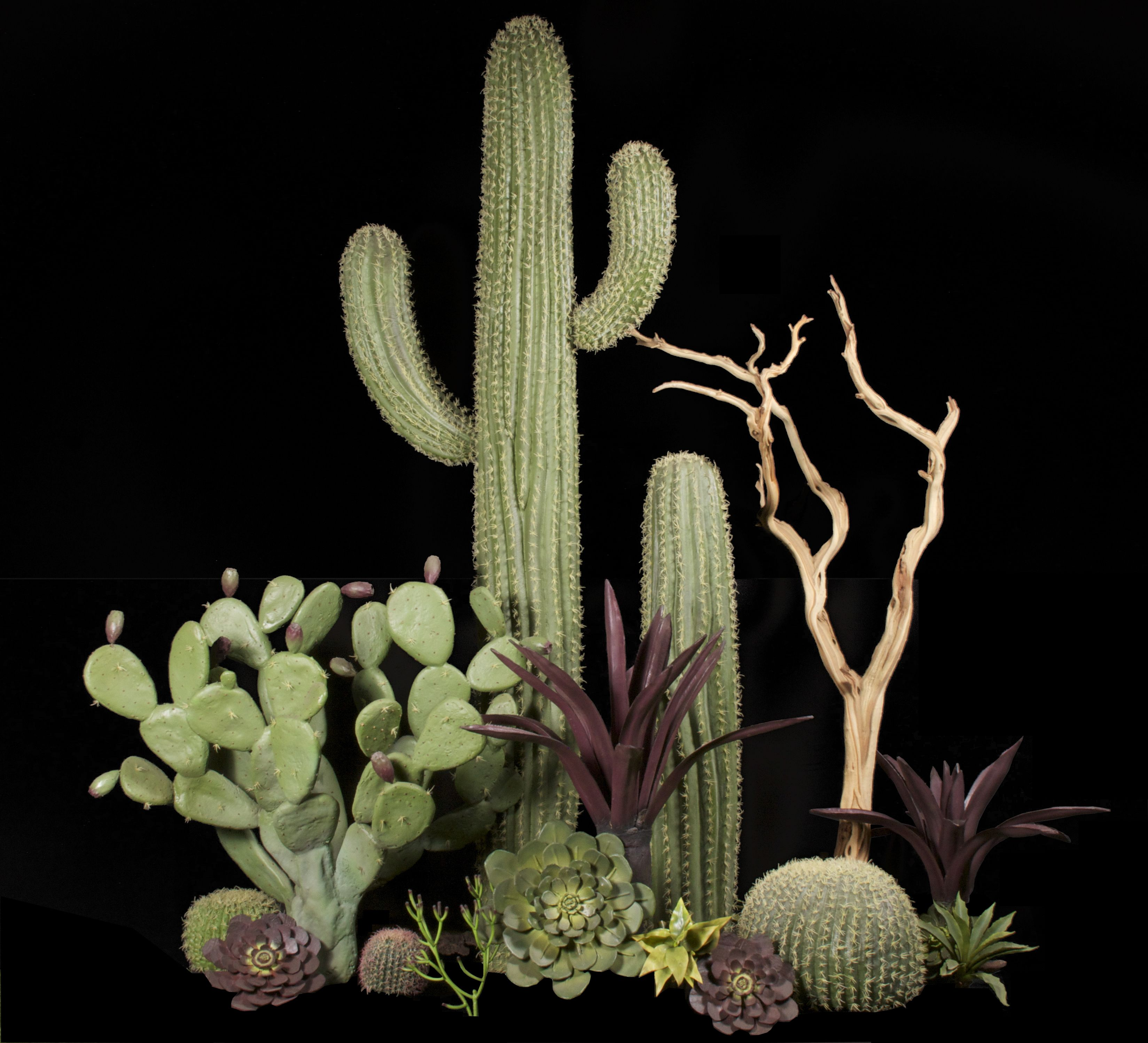 Fabricated desert scene with saguaro cactus and succulents