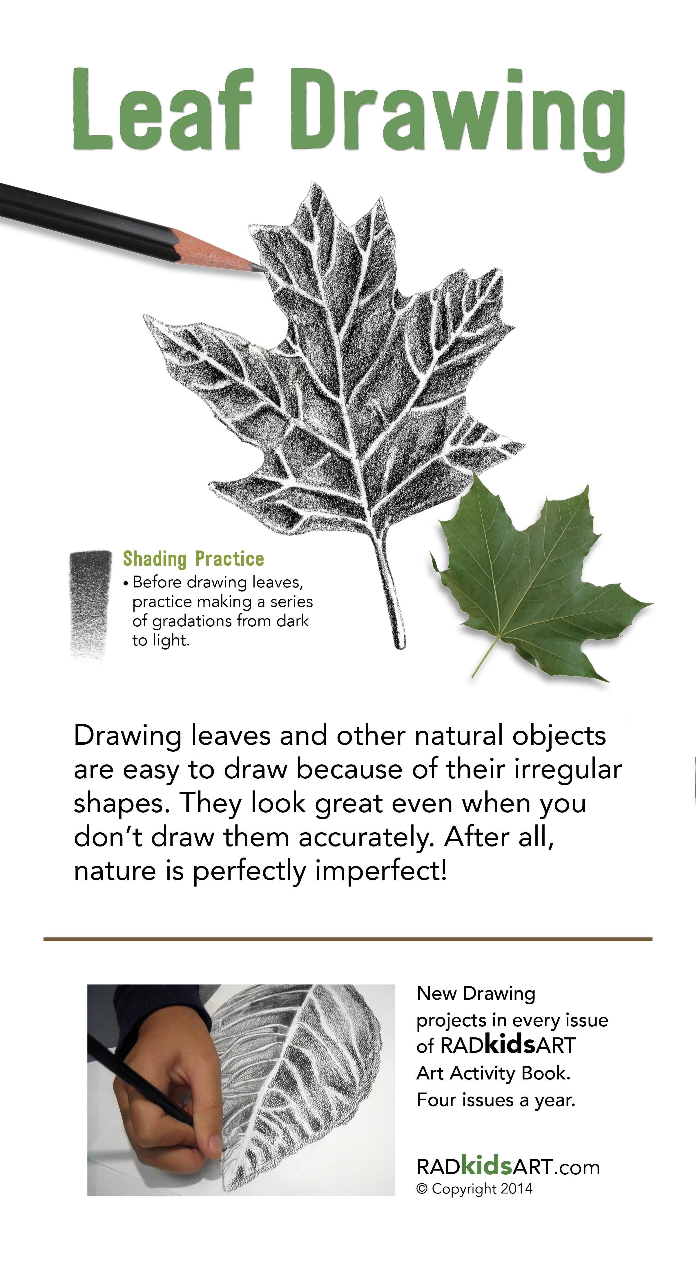how to draw a leaf with shading