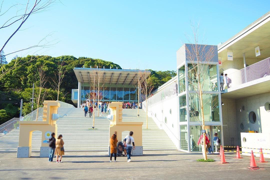 エントランス施設がリニューアルオープンした 福岡市動物園 福岡 Street View Scenes Street