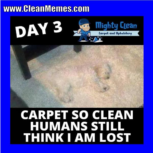 f1d018de2ad8b225b6fe163ba45d8be7 pin by clean memes on clean memes pinterest memes and humor