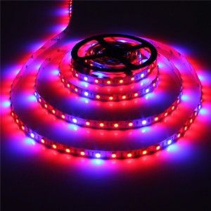 Led Grow Lights 5050 Led Striplight 4 1 Ratio Grow Lights Grow Lights For Plants Led Grow Lights