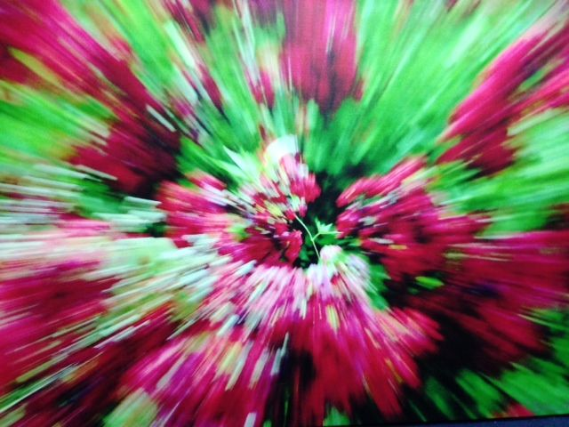 """#PERK - ABSTRACT CHERRY BLOSSOMS: Original piece by photographer, Dominique Fierro.  Printed on stretched photo canvas 30"""" x 45"""".  #photo #photography #ProjectSOAR #art #DCdesign"""