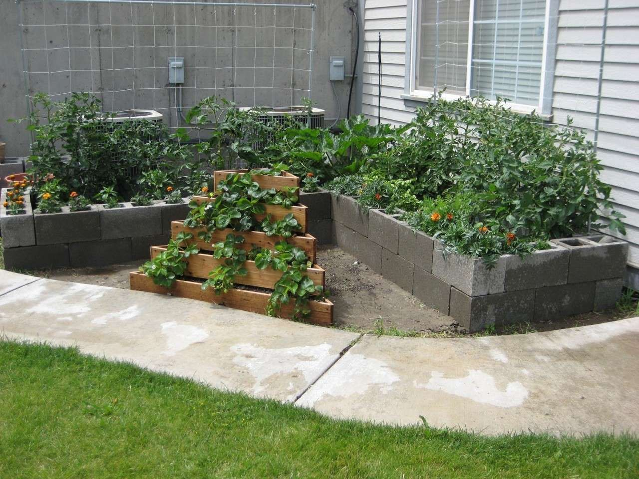 Raised flower bed. Looks like the back side is lined with ... |Cinder Block Flower Bed Plans