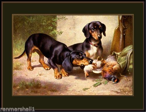 Vintage English Print Dachshund Dog Quail Art Picture Vintage