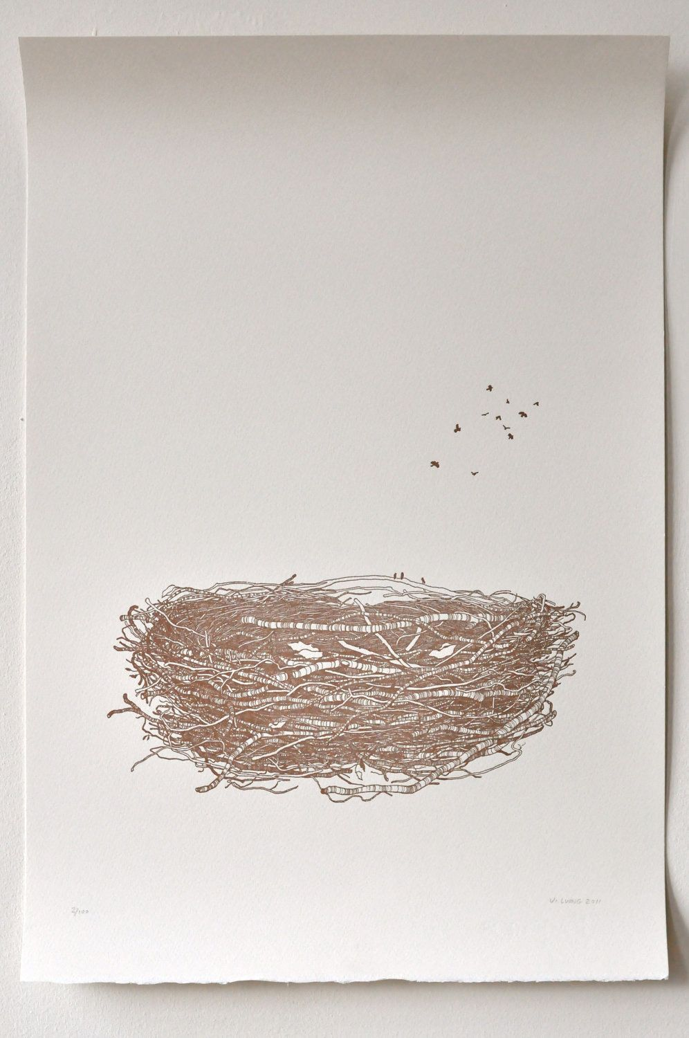 Drawing printout how to draw a bird nest - Bird S Nest Drawing Limited Edition Letterpress Print Of 100