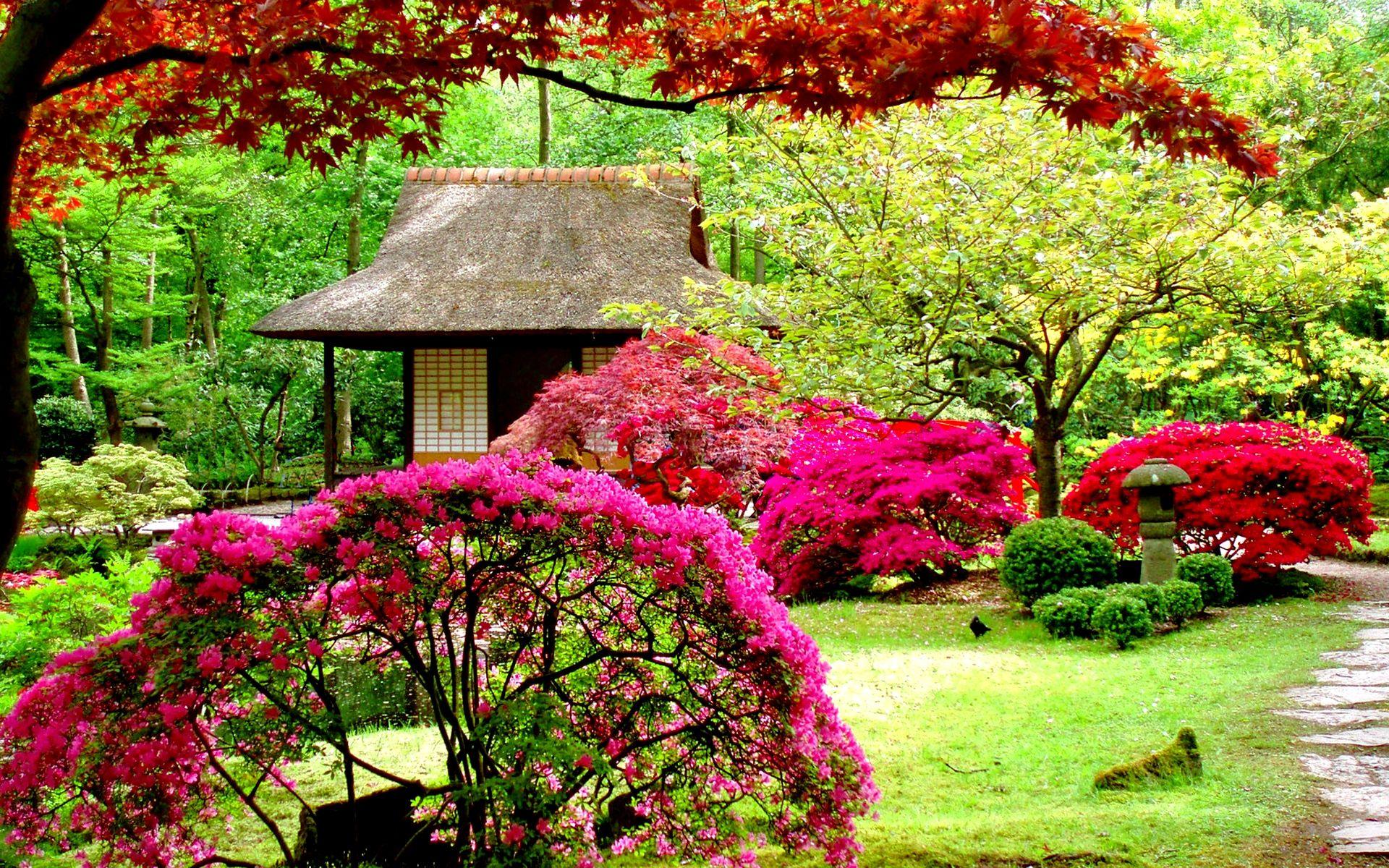 Lush Greenery Pictures Beautiful Gardens Japanese Garden Design Beautiful Flowers Garden Japanese Garden