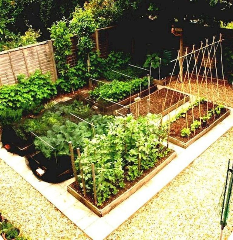 Most Productive Small Vegetable Garden Ideas For Small Space 20