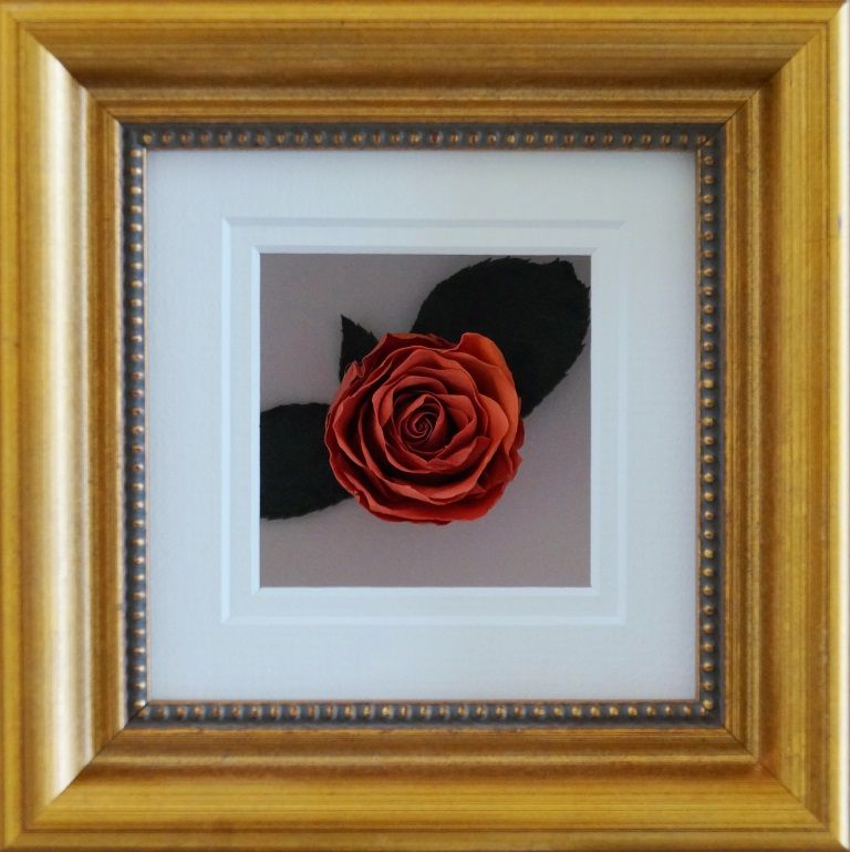 A Single Preserved And Framed Coral Orange Rose The Perfect Gift Wedding Bouquet Preservation Bouquet Preservation Floral Preservation