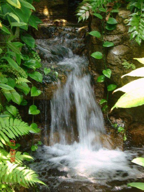 Bassin de jardin avec cascade qui dit mieux inspiration bassin de jardin jardin d 39 eau et - Bassin de jardin avec cascade ...