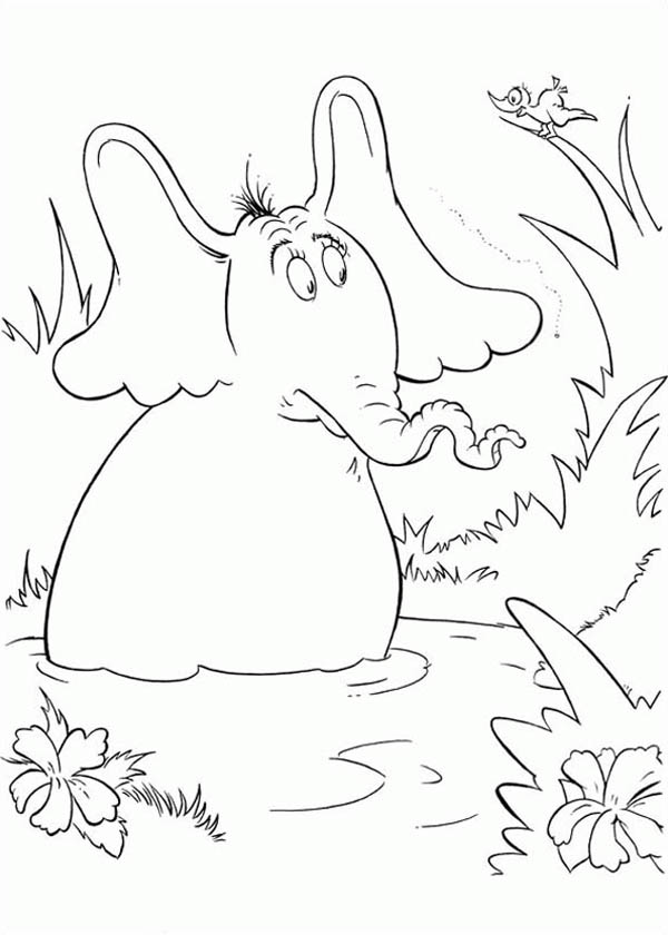 Horton Hears A Who Meet A Bird Coloring Pages Bulk Color Bird Coloring Pages Coloring Pages Dr Seuss Coloring Pages
