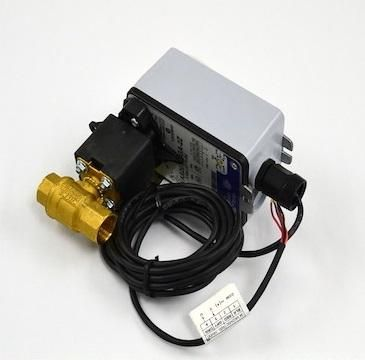 Johnson Controls VG1245AGH943GGA Valve
