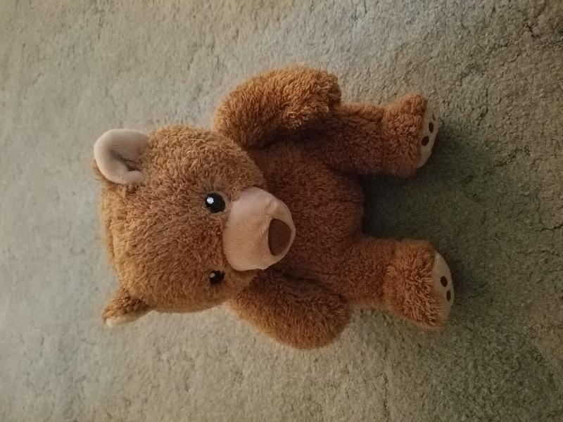 Found On 30 Jul 2016 Oquirrh Park Fitness Center In Kearns Ut A Kohl S Teddy Bear Found On The Ground By The Picnic Table Kearns Fitness Center Teddy Bear