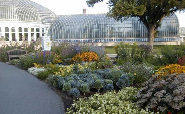 Enchanted Garden Como Park Zoo And Conservatory Minnesota Garden Enchanted Garden Como Zoo