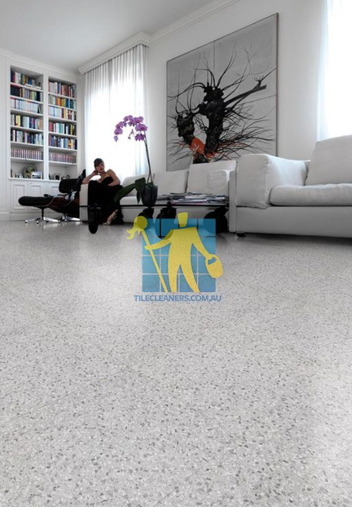 Terrazzo Tiles Inside Home Floor Regular Size Traditional