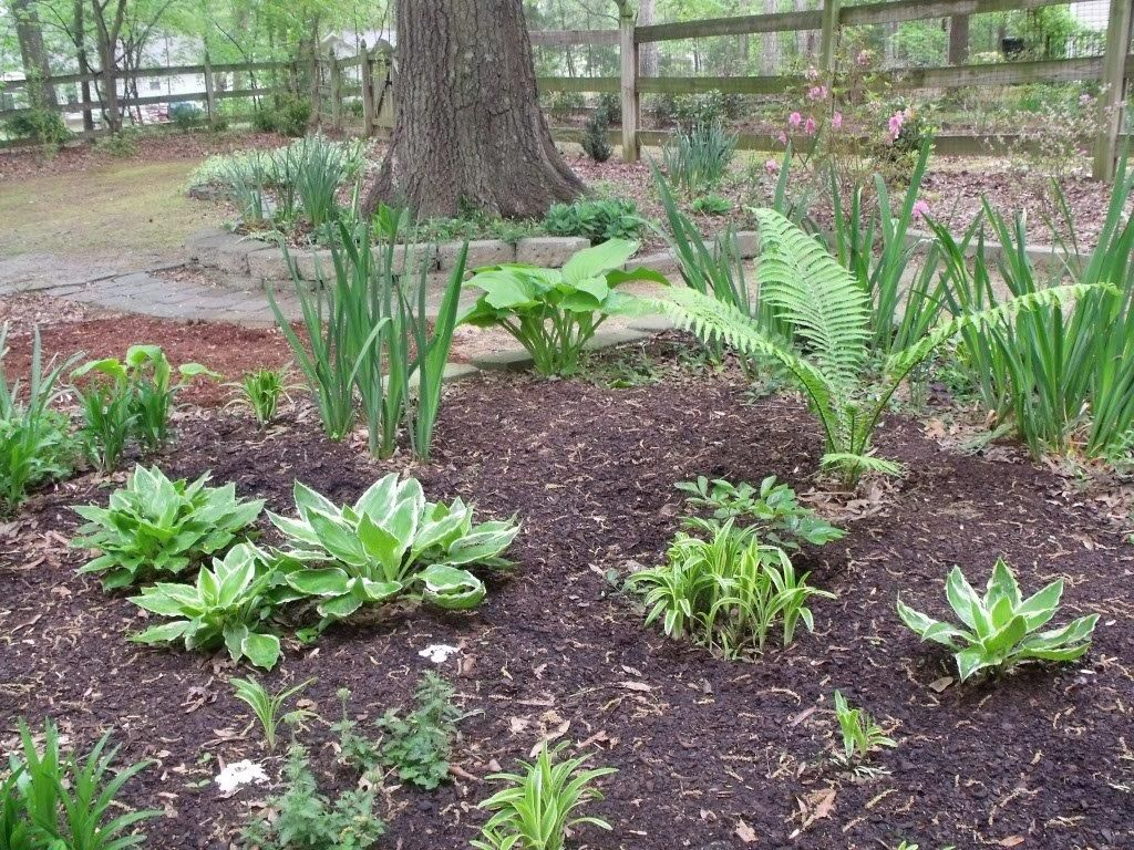 Garden Ideas North Carolina weeding is a joy in june's north carolina garden | fine gardening