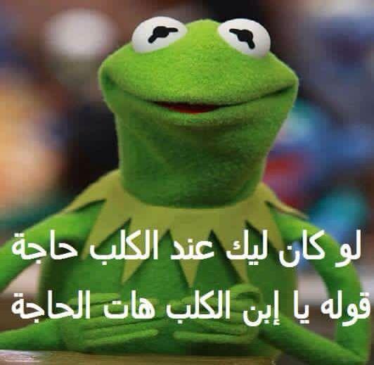 ههههههه يابن الكلب Funny Dude Arabic Funny Funny Comments