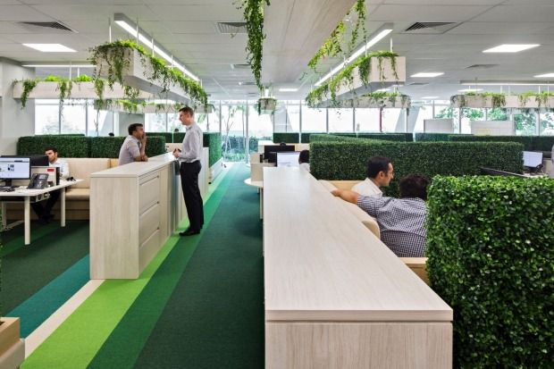 office greenery. Image Result For Ambient Corporate Plants Hanging Office Greenery N