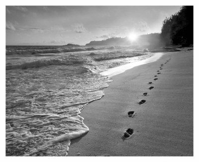 Black and white beach prints black white beach sunset exotic photo hawaii islands