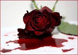 Resultado de imagen para flor sangrienta