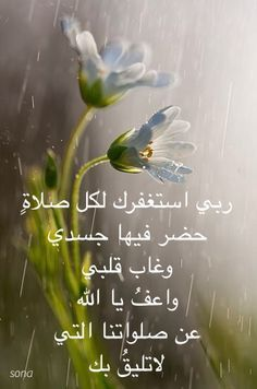 Pin By Nermine Elfeky On الباقيات الصالحات Spiritual Words Islamic Quotes Quran Verses