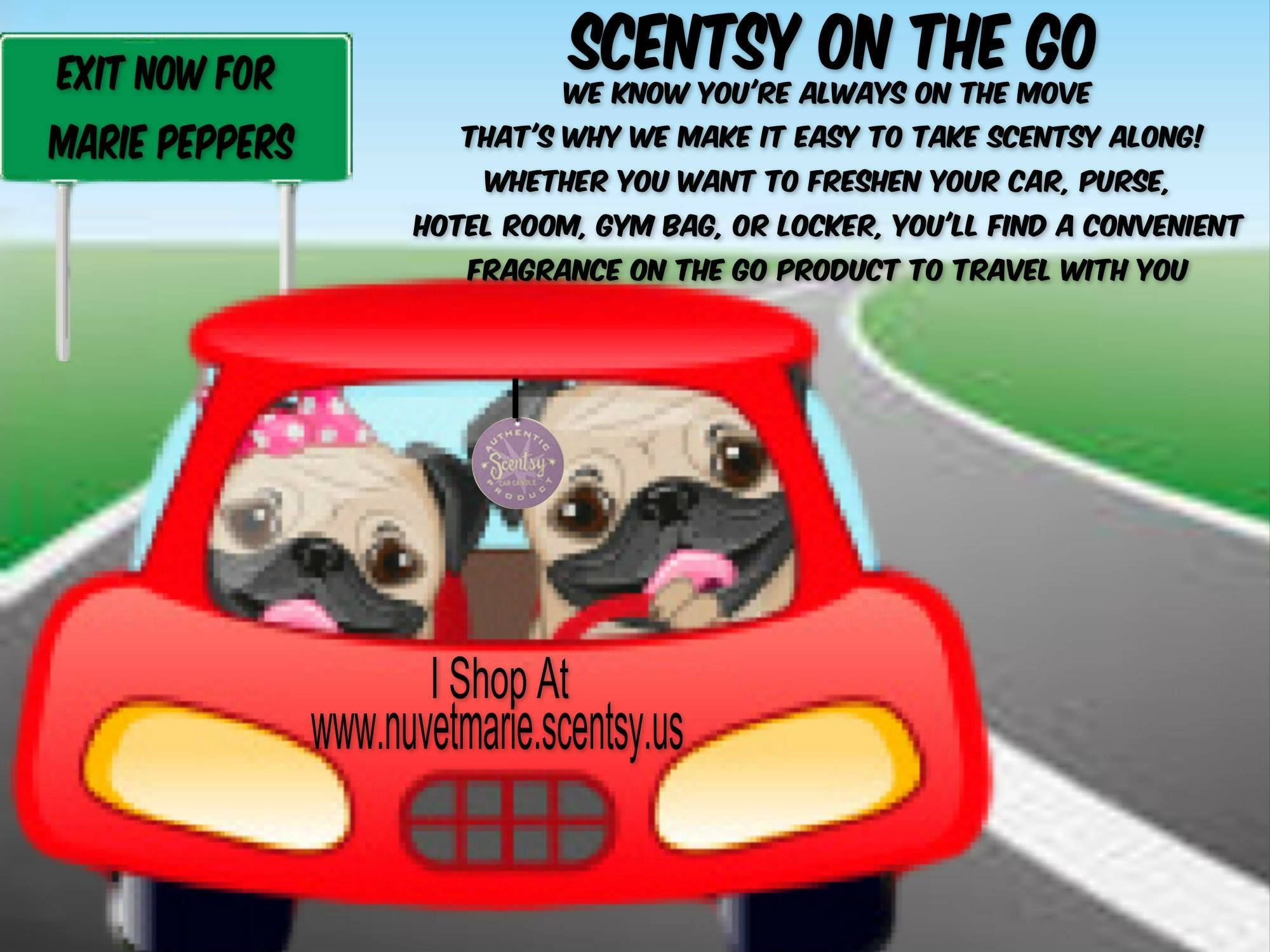 Scentsy is pet safe and will make your Auto smell