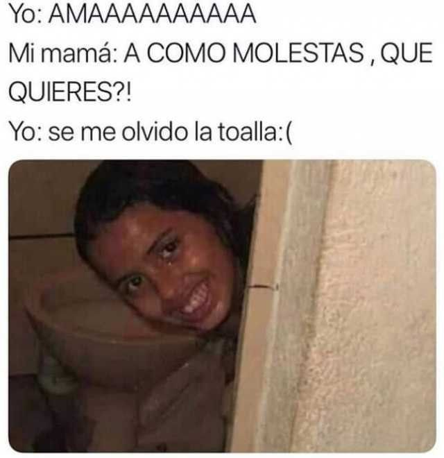 Ama Mi Toalla Memes Divertidos Memes Chistosos En Espanol Imagenes De Memes Graciosos