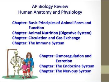 Advanced Placement (AP) Biology Review PPT: Human Body