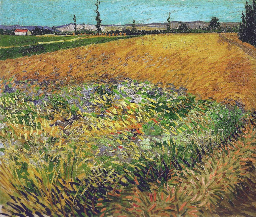 Vincent Van Gogh Wheat Field 1888 Van Gogh Museum Amsterdam Netherlands Van Gogh Up Close At Philadelphia Museum Of Art Museu Van Gogh Van Gogh Pinturas E Pinturas Paisagens