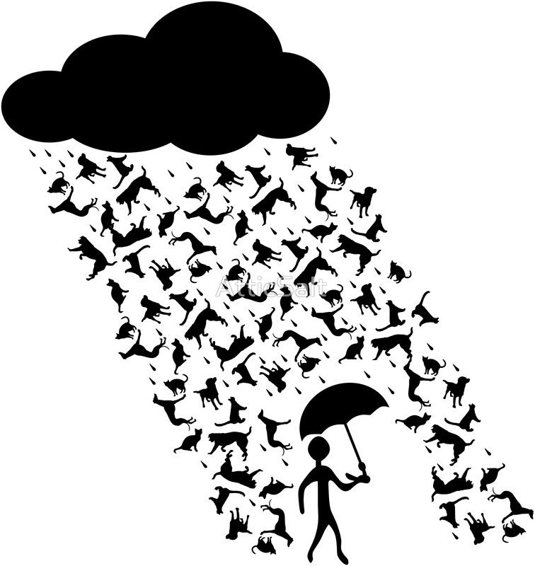 Raining Cats And Dogs Sticker Also Comes On Shirts Phone Cases Mugs And Many More Products Raingcatsanddogs Cats Dog Raining Cats And Dogs Dog Cat Idioms