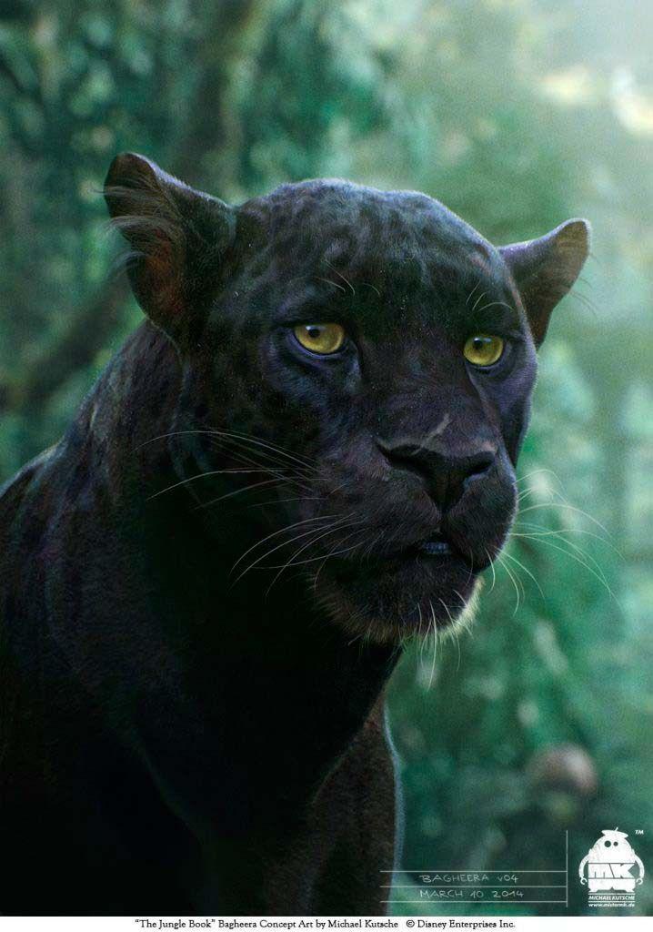 Le Livre De La Jungle Bagheera : livre, jungle, bagheera, Tierrart, Créations, Livre, Jungle,, Animaux,, Dessin, D'animal