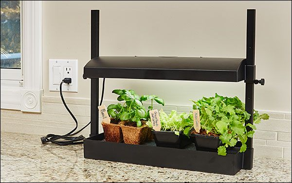 Indoor Gardening Gifts Grow light indoor mini garden gifts kitchen garden pinterest grow light indoor mini garden workwithnaturefo