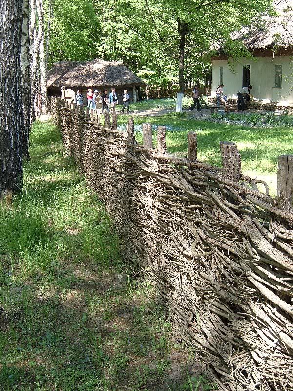 http://i49.photobucket.com/albums/f264/ssinke/0003g.jpg | Fences ...