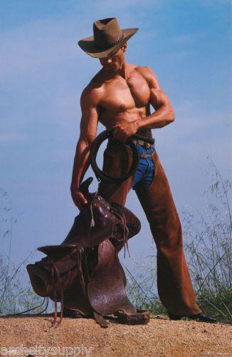 Poster Art Chaps Cowboy Sexy Male Model Free Shipping Pc Lw J