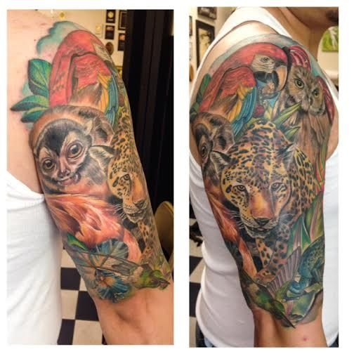 Full color Colombian rain forest themed lemur parrot and
