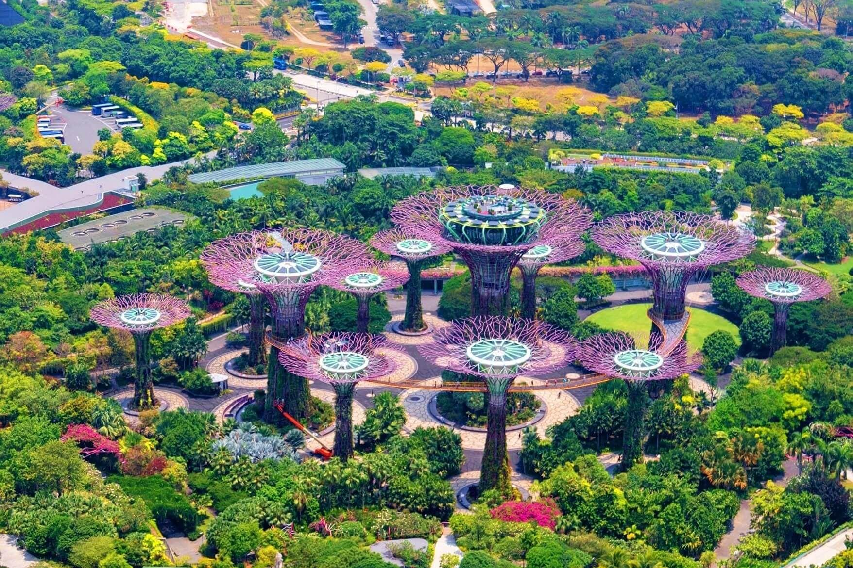 f1dc3662936dca129b097b55f70e9a4c - Supertree Grove Gardens By The Bay Singapore